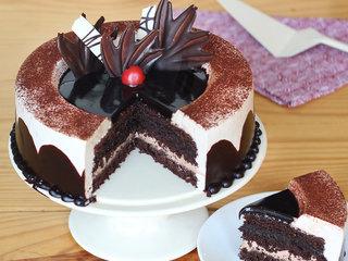 Sliced View of Chocolate Light Cake