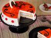 Sliced View of Strawberry Cake With White N Dark Chocolate